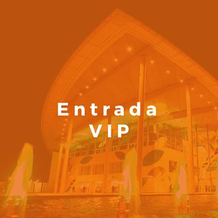 Congreso Digital y Social Marketing Valencia 2017 - Entradas - Entrada VIP